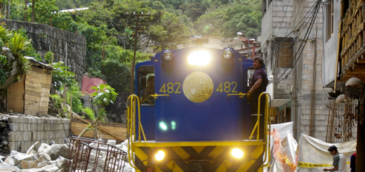 A blue and yellow train in a small village surrounded by green jungle